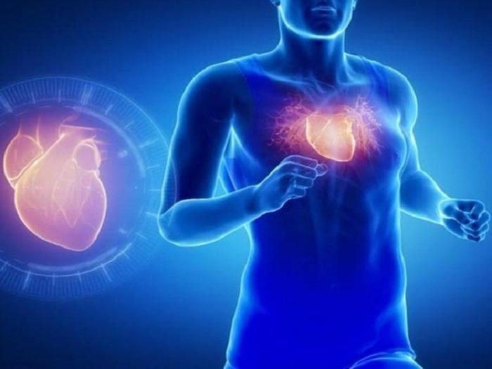 Nhóm người có bệnh về tim mạch