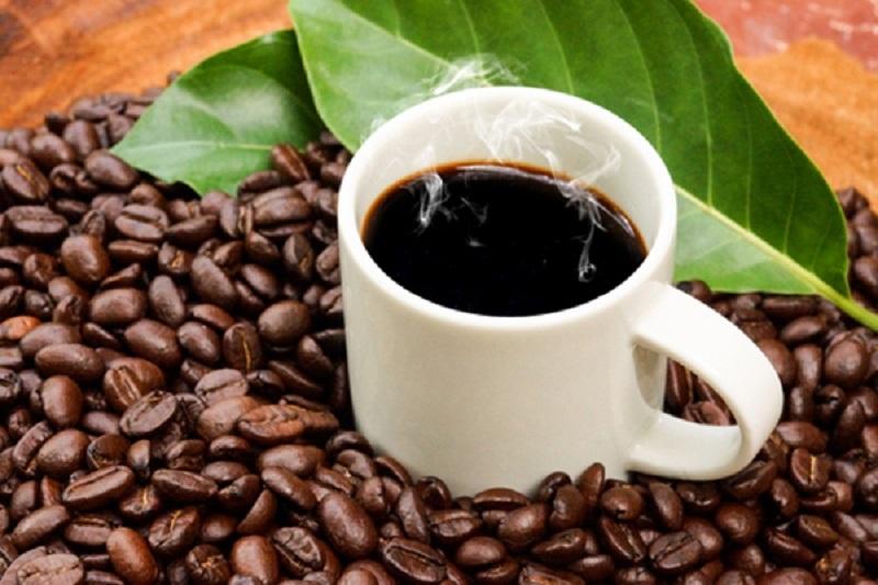 Cà phê Organic (cafe hữu cơ)